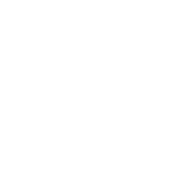 Aktis Group
